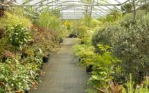 Mobilier, Jardins et Piscines