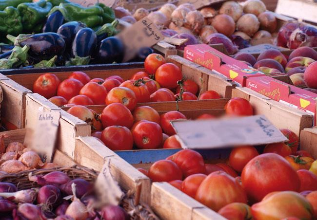Exploitations agricoles