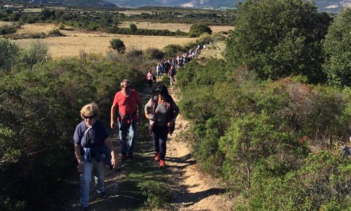 Marche bleue organisée par le CCAS : un succès éclatant