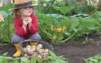 Aménagement du jardin Ortu di a Funtana